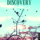Discovery -Life Design 101 featuring The Desire Map Level 1